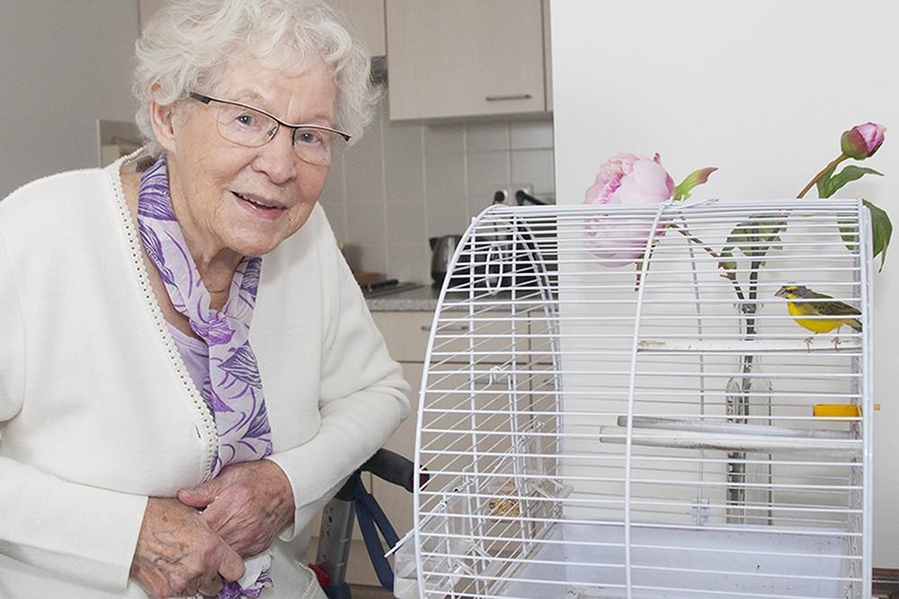 ouderen met vogelkooi zorgfotograaf